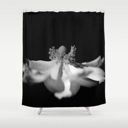 BW Anemoe Shower Curtain