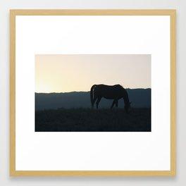 Horse Eating Framed Art Print
