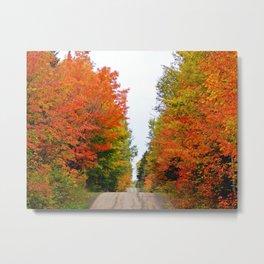 Mountain Road in Autumn Colors Metal Print