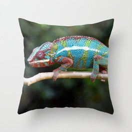 Turquoise Chameleon Throw Pillow