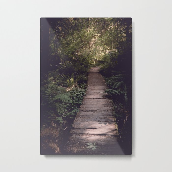 Pacific Northwest Forest Trail Metal Print