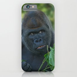 Silverback Got His Eye One Some More Leaves iPhone Case