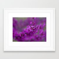 focus Framed Art Prints featuring Focus by Mark Alder