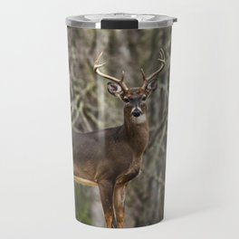 White Tailed Deer Eight Point Buck Travel Mug