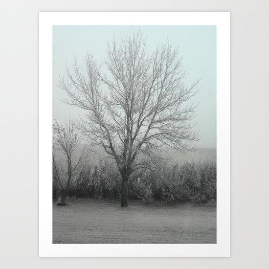 Misty morning /photo Art Print