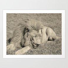 The Lazy King Art Print