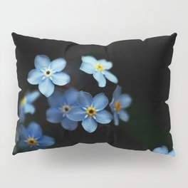 Forget Me Nots on Black Pillow Sham