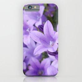 DREAMY - Purple flowers - Bellflower in the sun #1 iPhone Case