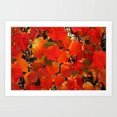 Blätter im Herbst Art Print