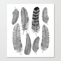 feathers Canvas Prints featuring Feathers by Holly Trill