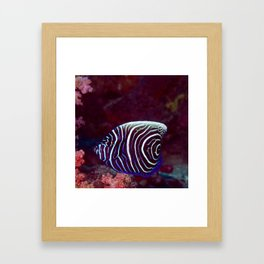Fingerprint fish Framed Art Print