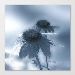 Windflower in Bue Canvas Print