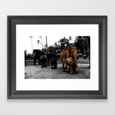 Pinnawala Framed Art Print