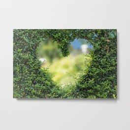 Heart in nature   coeur dans la nature Metal Print