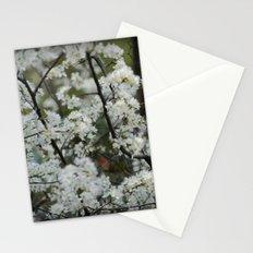 Soft White Stationery Cards