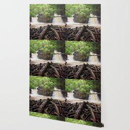 Twin Falls Wallpaper