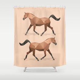 Arabian Stallion Horse. Shower Curtain