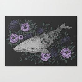 Dive III Canvas Print