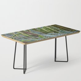 YOUNG RAINFOREST MAPLES Coffee Table