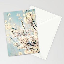 Spring! Stationery Cards