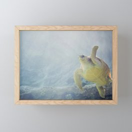Coasting Turtle Framed Mini Art Print
