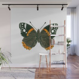 Admiral butterfly ink illustration Wall Mural