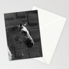 Mestizo Stationery Cards