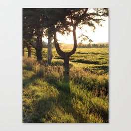 The  U tree Canvas Print