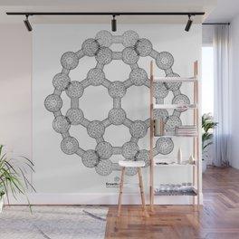 GEOMETRIC NATURE: MOLECULAR SOCCER w/b Wall Mural