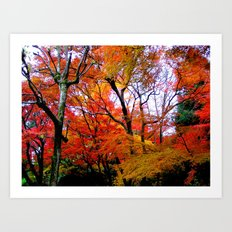 Autumn Fire #2 Art Print