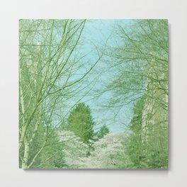 SKY AND TREES Metal Print