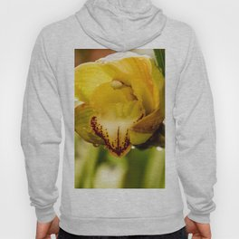 orchid I Hoody