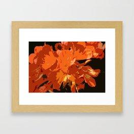 Orange Bush Lily Framed Art Print