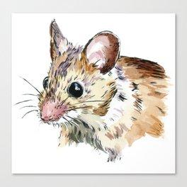 Little Brown Mouse Canvas Print