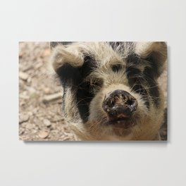 A Face that Only a Mother Could Love Metal Print