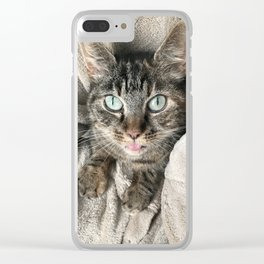 Cosy green-eyed cat Clear iPhone Case