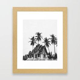 palms in Laos Framed Art Print