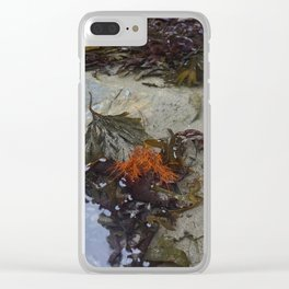 Collection of Seaweed in a Shallow Rockpool Clear iPhone Case