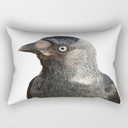 Jackdaw (Corvus monedula) Bird Portrait Vector Rectangular Pillow