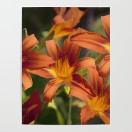 Lilies - Painted Poster
