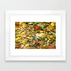 A Colorful Creek, Glacier National Park Framed Art Print