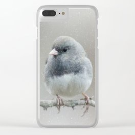 Dark Eyed Junco Storm Clear iPhone Case