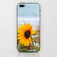 Sunflower near ocean iPhone & iPod Skin
