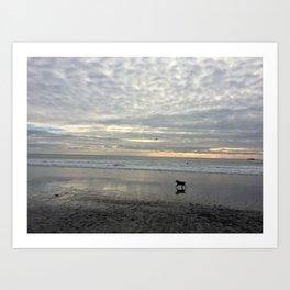 Happy Dog @Muir Beach Art Print