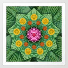 Nature's Star Art Print