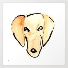 Daschshund Art Print