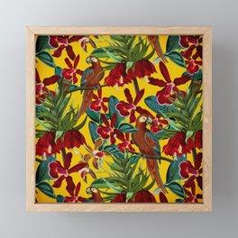 Vintage & Shabby Chic - Colorful Parrots tropical Jungle Pattern Framed Mini Art Print