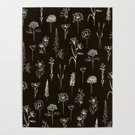 Patagonian wildflowers Poster