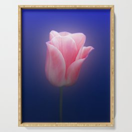 Romantic Pink Solo Tulip On Blue Background Serving Tray