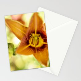 Day Lily Abstract Stationery Cards